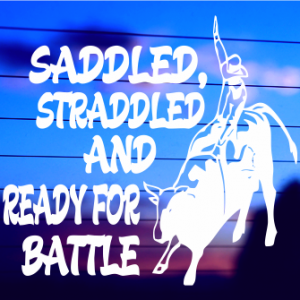 0387                Saddled, Straddled and Ready for Battle