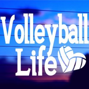 A-0323 Volleyball Life (500 x 335)